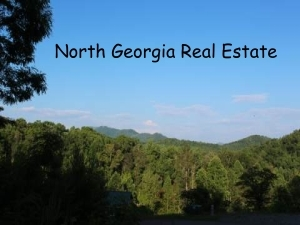 Real Estate in Blue Ridge Georgia